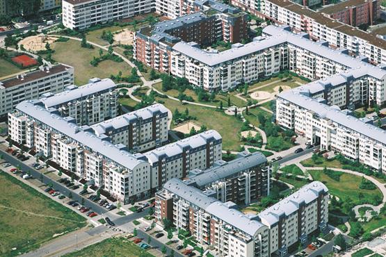 Weisse Taube Berlin
